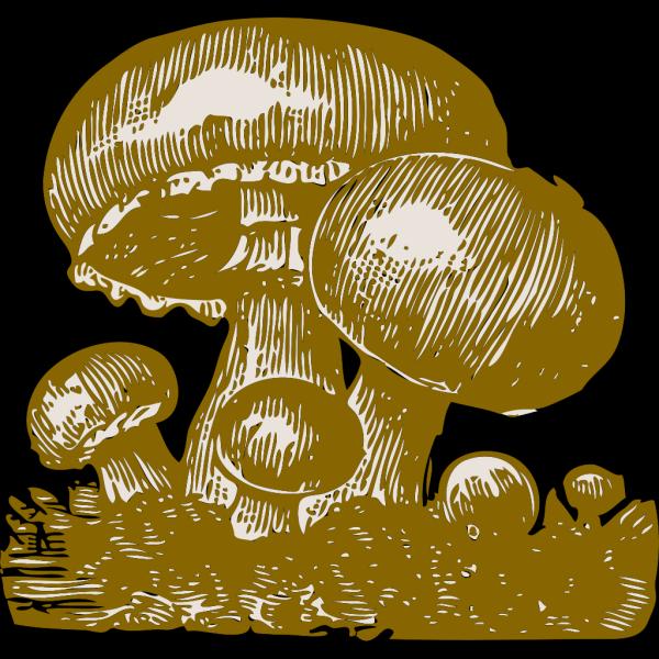 Mushrooms PNG Clip art