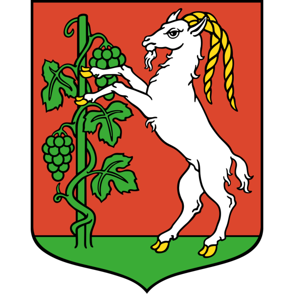 Lublin Coat Of Arms PNG Clip art