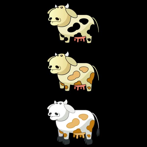 Colour Cows 3 PNG images