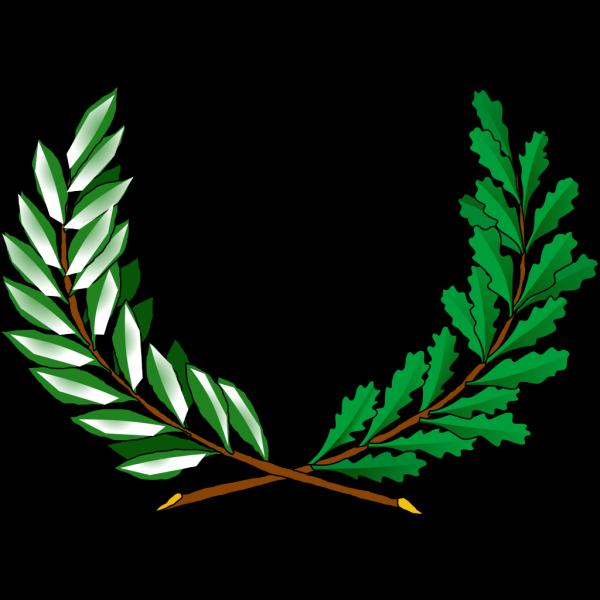 Tree Vines PNG Clip art