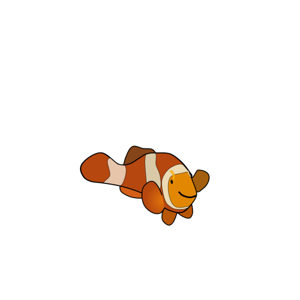 Clown Fish PNG images