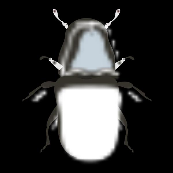 Jameshfisher Pine Beetle PNG Clip art
