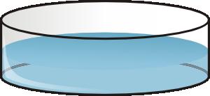 Olagosta Petri Dish PNG Clip art