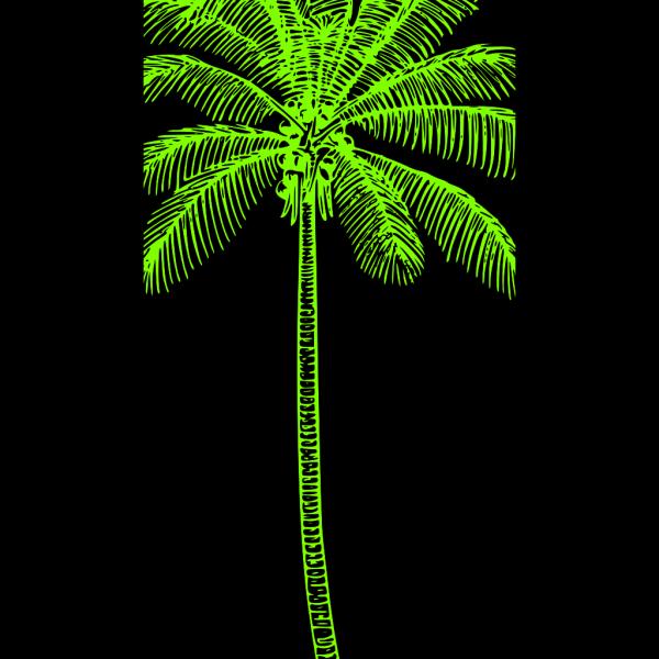 Cartoon Green Palm Tree PNG Clip art