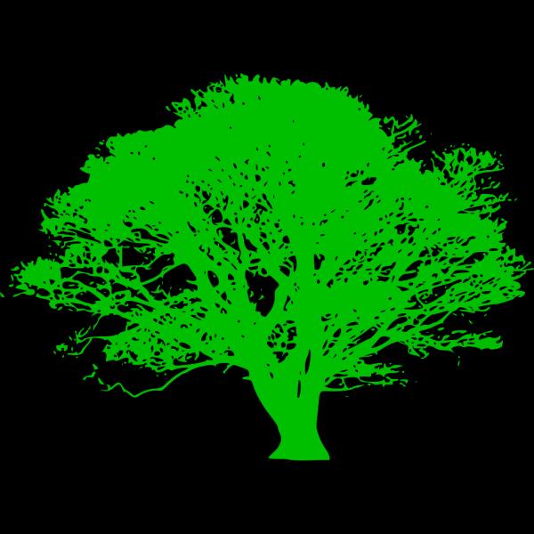 Green Tree Branch PNG Clip art