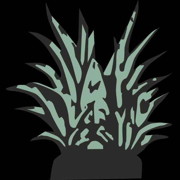 Plant PNG Clip art
