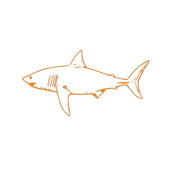 Abstract Shark PNG images
