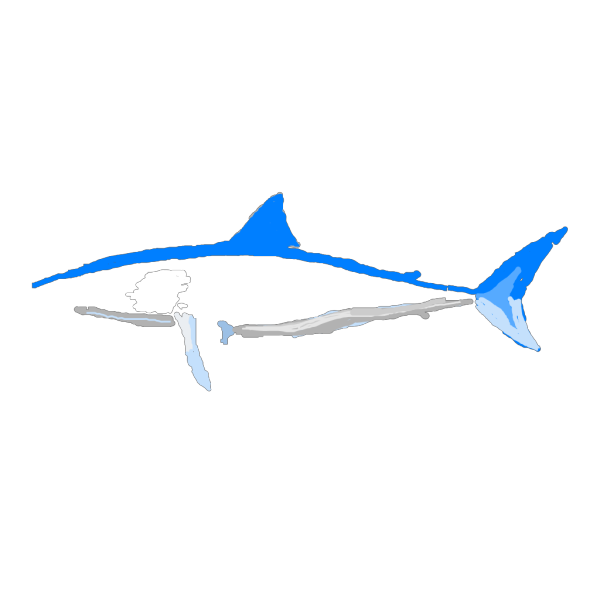 Shark No Words PNG images