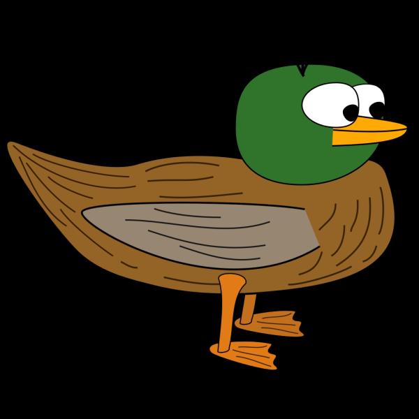 Cartoon Duck PNG Clip art