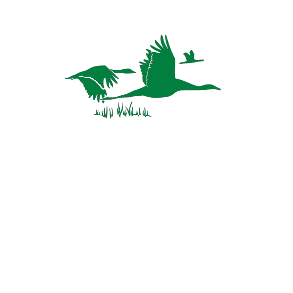 Green Geese PNG Clip art