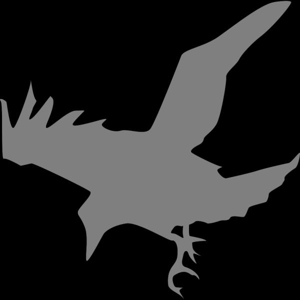Black Raven PNG images