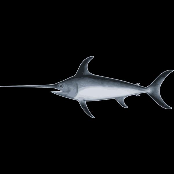 Sword Fish PNG Clip art