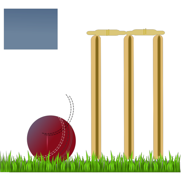 Cricket Illustration PNG Clip art