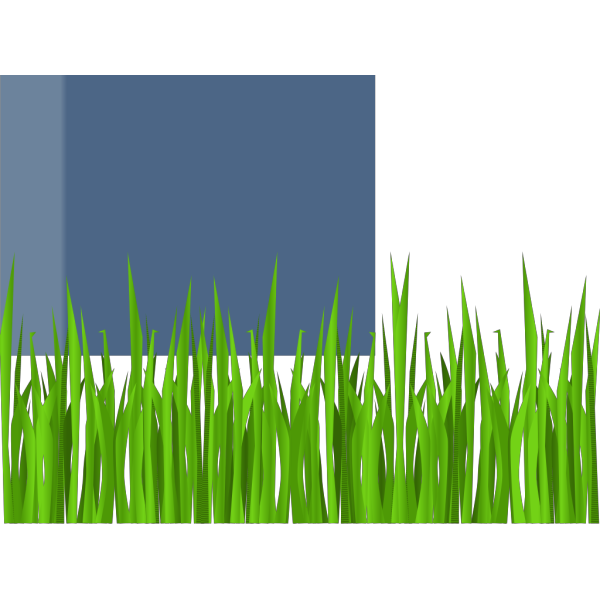 Grass 11 PNG Clip art