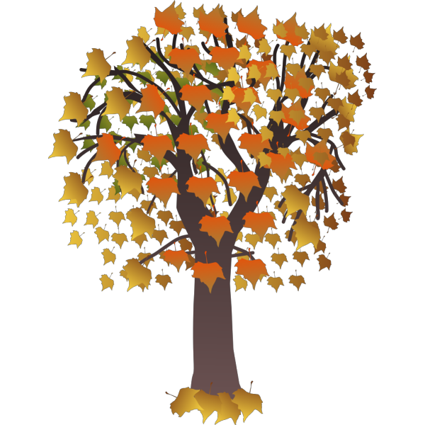 Maple Tree PNG Clip art