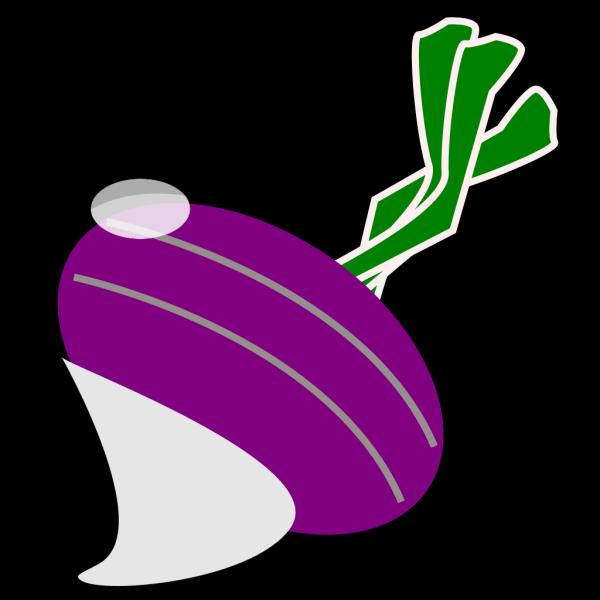 Turnip PNG Clip art