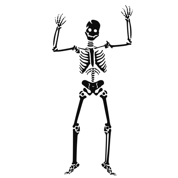 Scary Skeleton PNG Clip art