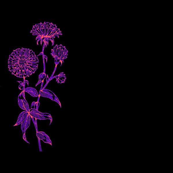 Purple Flower 11 PNG Clip art