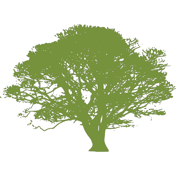 Green Tree PNG Clip art