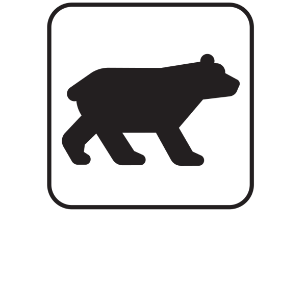 Bear Viewing White PNG Clip art