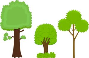 Trees PNG Clip art