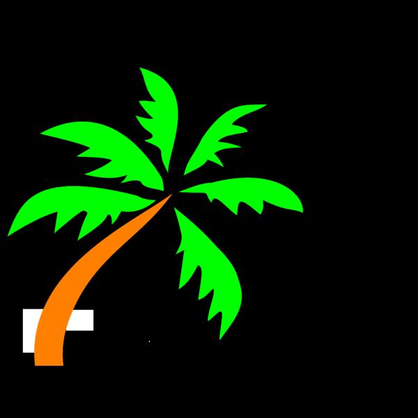 Palm Tree PNG Clip art