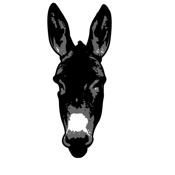 Donkey Head PNG images