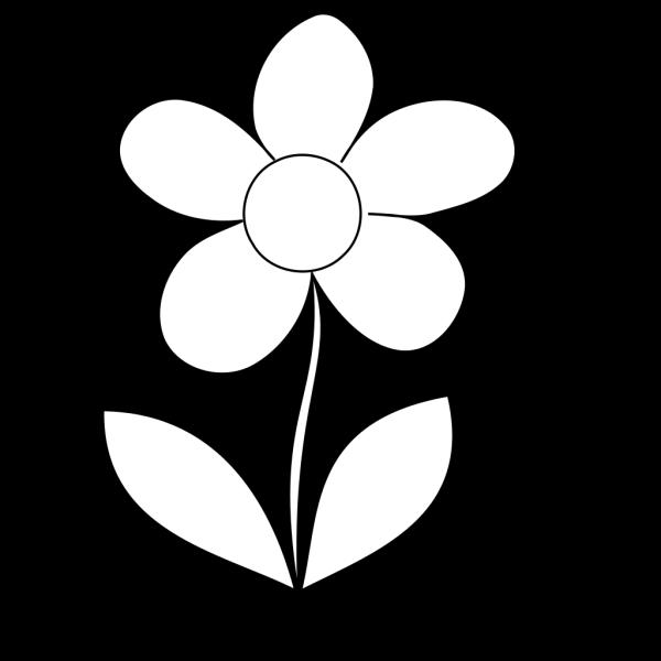 Clear Flower PNG Clip art