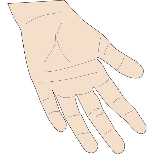 Hand Palm PNG Clip art