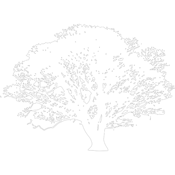 Black And White Tree PNG Clip art