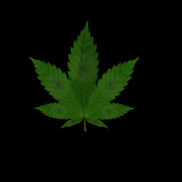 Cannabis Leaf PNG Clip art