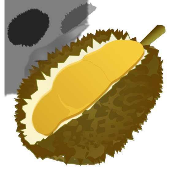 Durian PNG clipart