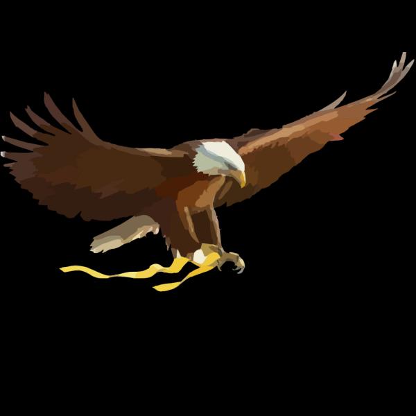 Soaring Eagle Large PNG Clip art