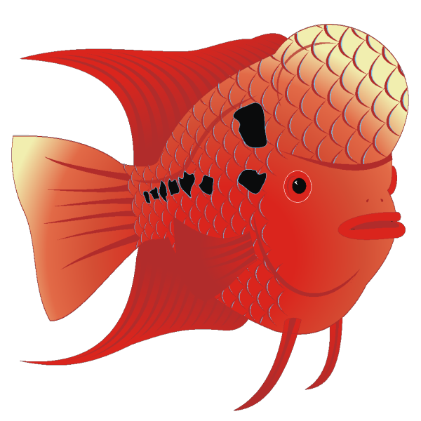 Red Fish PNG Clip art