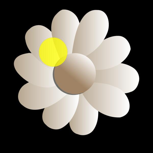 Daisy Day Care Daisy PNG Clip art