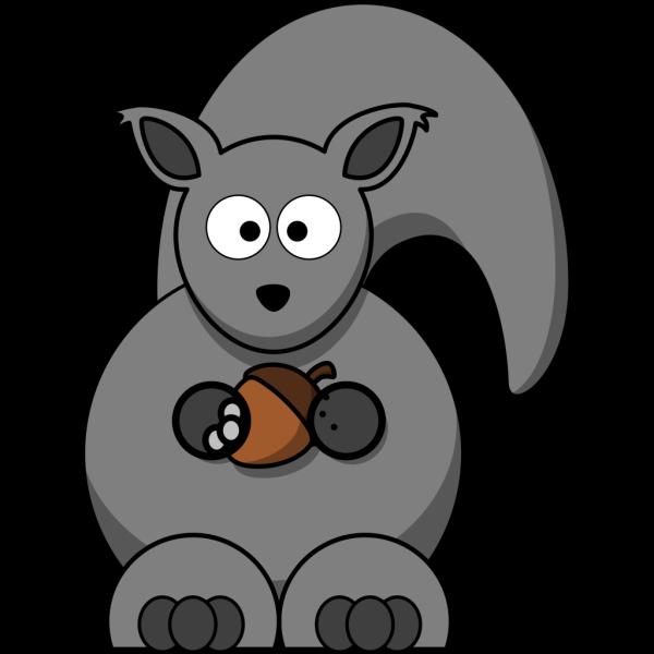 Grey Squirrel PNG Clip art