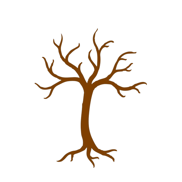 Tree Trunk And Branches PNG Clip art