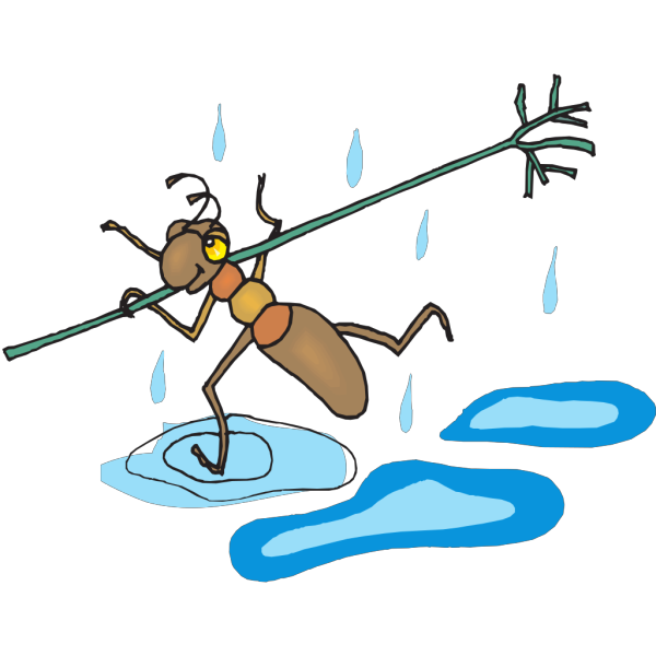 Ant Running Through The Rain PNG Clip art