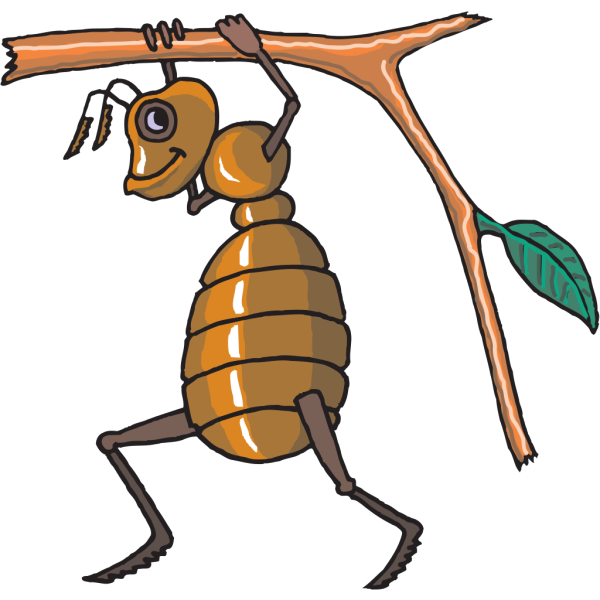 Ant Carrying Twig PNG Clip art