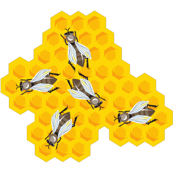 Bees In A Hive PNG images