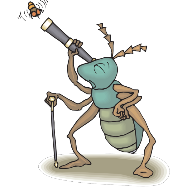 Bug Watching Fly PNG Clip art
