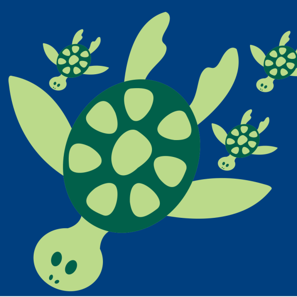Turtles PNG images
