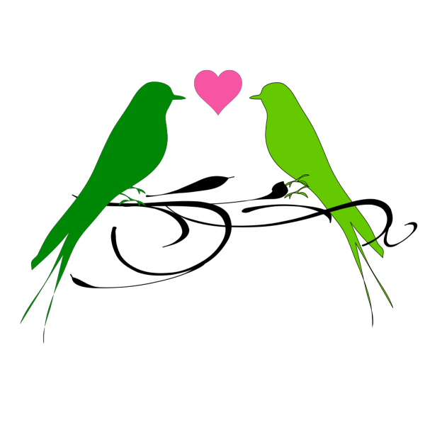 Love Birds On A Branch PNG images