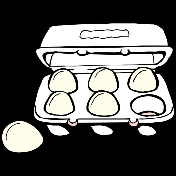Egg Carton  PNG Clip art