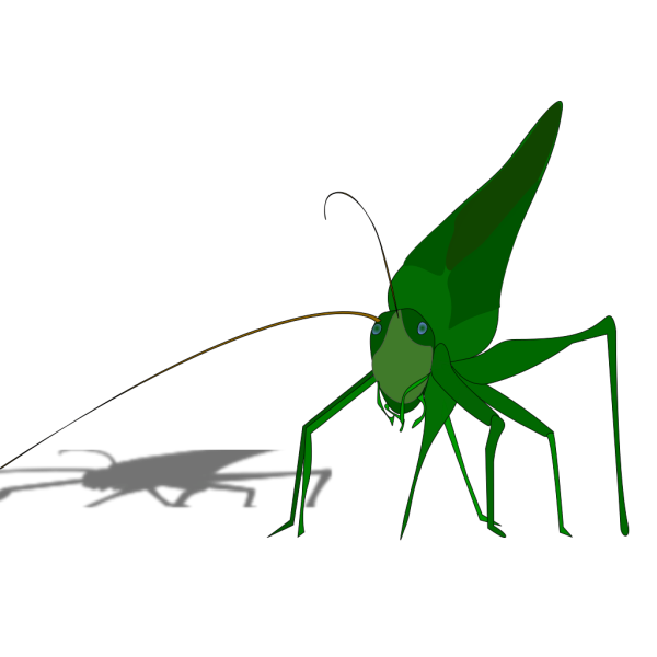Cartoon Grasshopper With Shadow PNG clipart