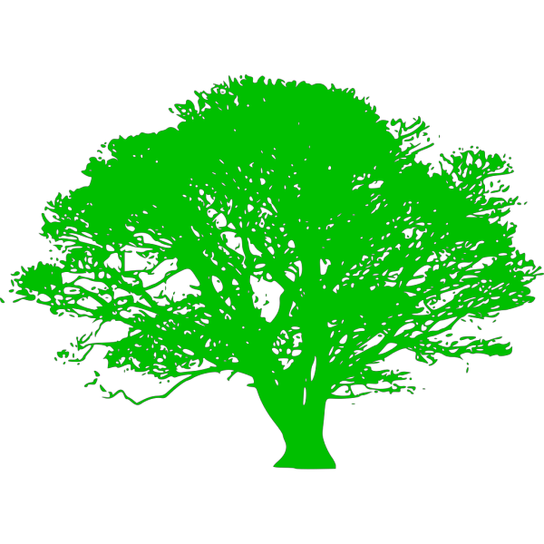 Brown And Green Tree Branch PNG Clip art