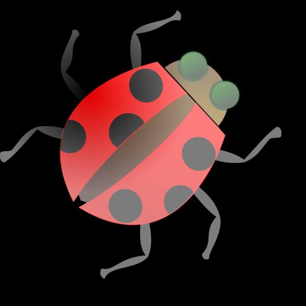 Cartoon Ladybug PNG Clip art