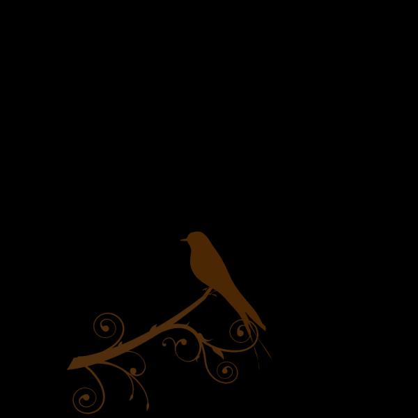 Bird On A Branch PNG Clip art