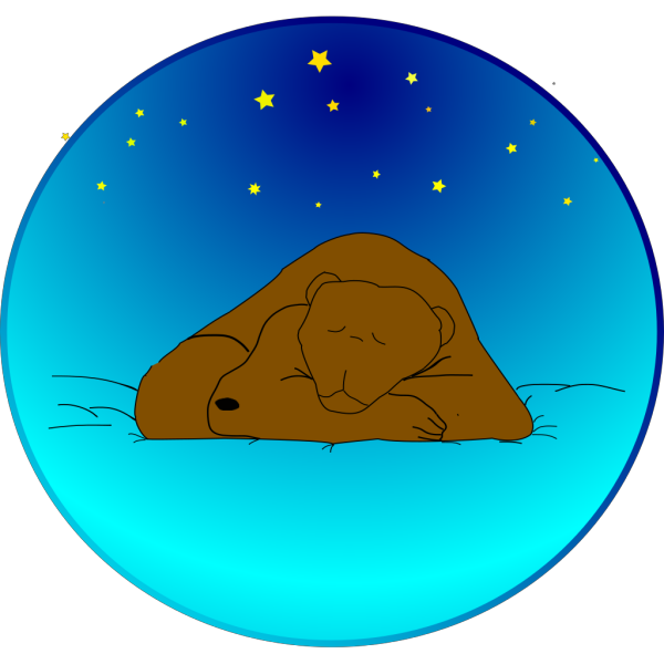 Bear Sleeping Under The Stars PNG Clip art