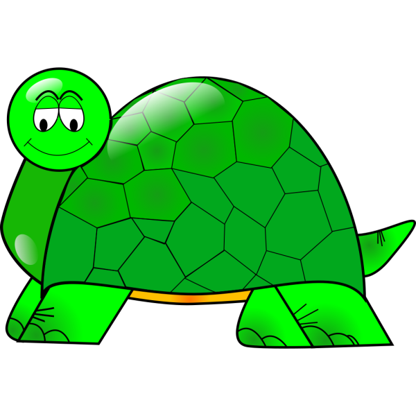 Painted Turtle PNG images
